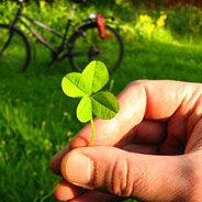 Unzählige Ratgeber versprechen das Glück - ist es so leicht zu finden?