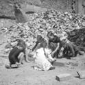 Wie wuchsen die Nachkriegskinder auf?