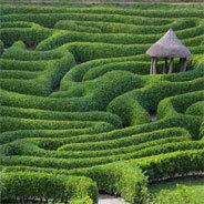 In einem Labyrinth kann man sich sehr leich verirren