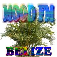 MOOD FM 106.3-Logo