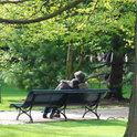 Das beliebte Grafenegg Festival im Schlosspark.