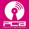 Pink City Beats-Logo