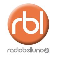Radio Belluno-Logo