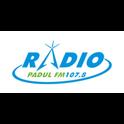 Radio Padul-Logo