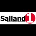Salland1 Radio-Logo