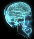 Was kann man aktuell gegen Parkinson unternehmen?