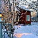 Weihnachten wird dieses Jahr im Garten gefeiert!