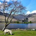 Schottlands Wiesen, Wälder, Berge und Seen gehören auch den mystischen Wesen der Anderwelt
