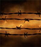 Der polnische Autor Tadeusz Borowski war selbst in Auschwitz inhaftiert und schildert in seinen Erzählbänden den schrecklichen Alltag im Lager