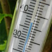 Die Erderwärmung wird langsam Spürbar.