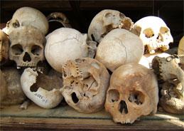 Der Totenschädel aus Namibia.