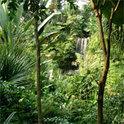 Cáceres kritisierte unter anderem die Zerstörung des Regenwaldes
