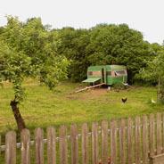 Im Tierpark wohnen ist der Traum vieler Kinder